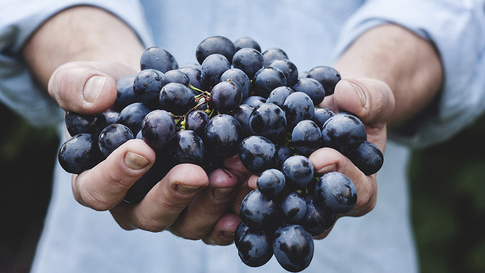 mani-uva