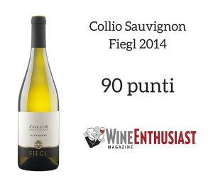 Collio Sauvignon Fiegl 2014