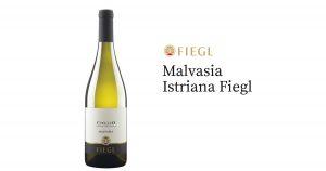 Malvasia Istriana Fiegl