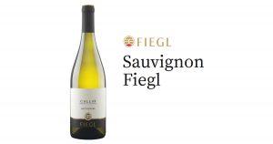 Sauvignon Fiegl